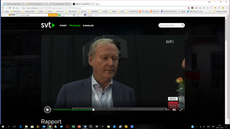 Leif Östling. Skärmdump Rapport 20171106